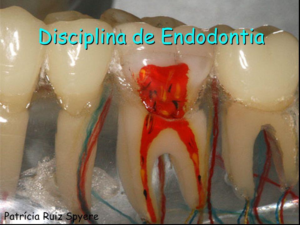Cohen; Burns A Endodontia é o campo da Odontologia que estuda a morfologia da cavidade pulpar, a fisiologia e a patologia da polpa dental, bem como a prevenção e o tratamento das alterações pulpares e de suas repercussões sobre os tecidos periapicais Soares, Goldberg, 2002 Endodontia Patrícia Ruiz Spyere