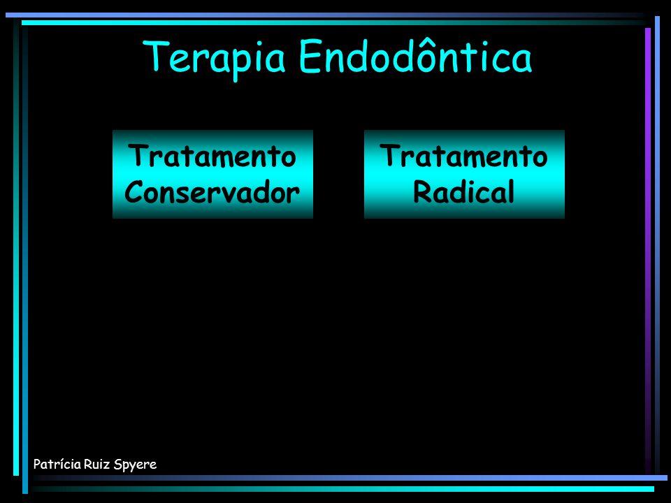E N D O D O N T I A DIAGNÓSTICO ABERTURA CORONÁRIA PREPARO BIOMECÂNICO FASE DE DESINFECÇÃO OBTURAÇÃO PROSERVAÇÃO SUCESSO Patrícia Ruiz Spyere