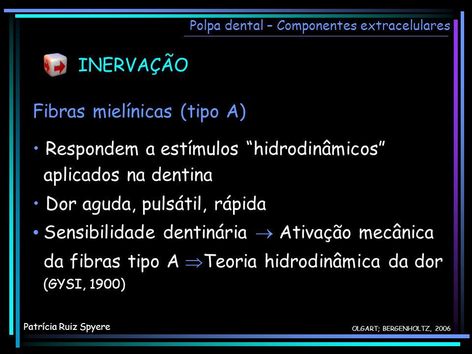 INERVAÇÃO Fibras mielínicas (tipo A) Respondem a estímulos hidrodinâmicos aplicados na dentina Dor aguda, pulsátil, rápida Sensibilidade dentinária At