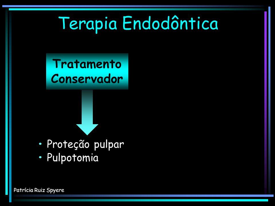 INERVAÇÃO Polpa dental – Componentes extracelulares NÄRHI, 2006 Maioria das terminações está situada na interface dentina-polpa da polpa coronária Maioria das terminações está situada na interface dentina-polpa da polpa coronária SOUZA, 2001 Patrícia Ruiz Spyere
