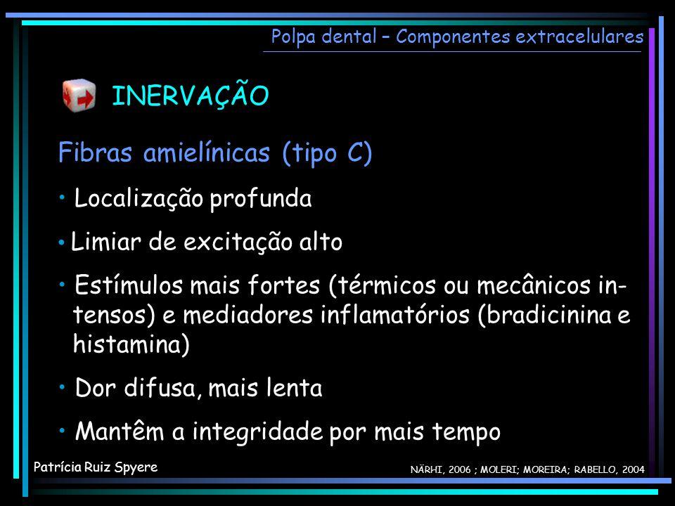 INERVAÇÃO Fibras amielínicas (tipo C) Localização profunda Limiar de excitação alto Estímulos mais fortes (térmicos ou mecânicos in- tensos) e mediado