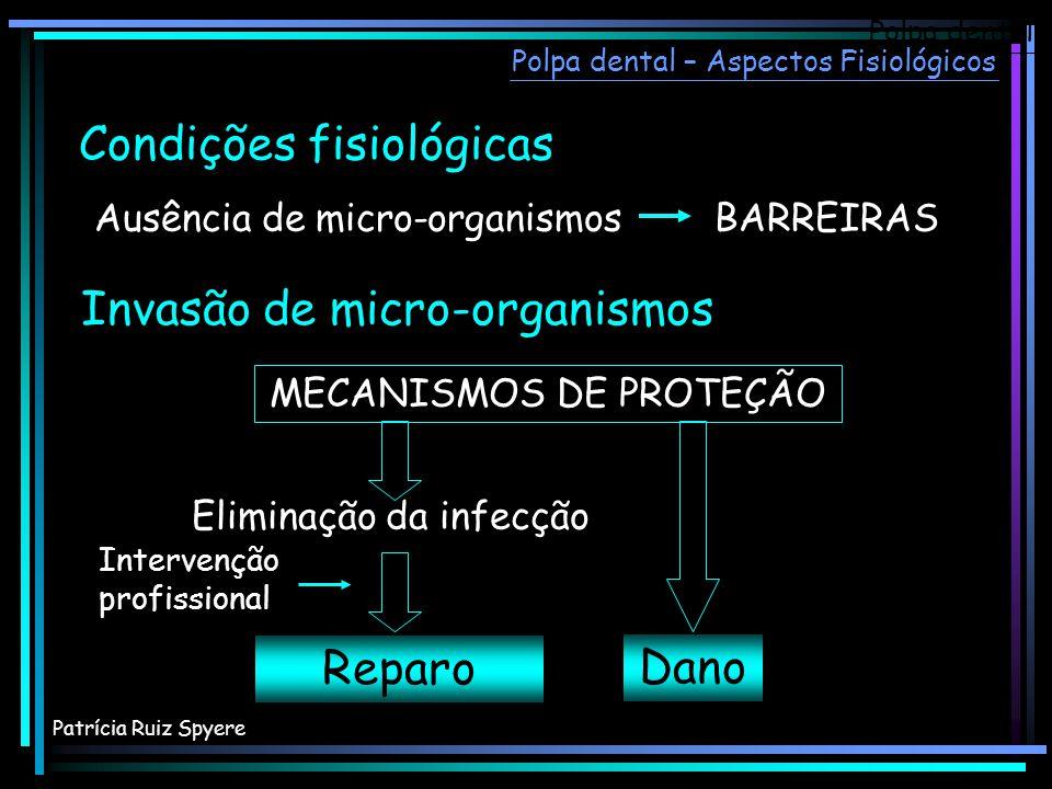 Invasão de micro-organismos Reparo MECANISMOS DE PROTEÇÃO Intervenção profissional Condições fisiológicas Ausência de micro-organismos BARREIRAS Elimi