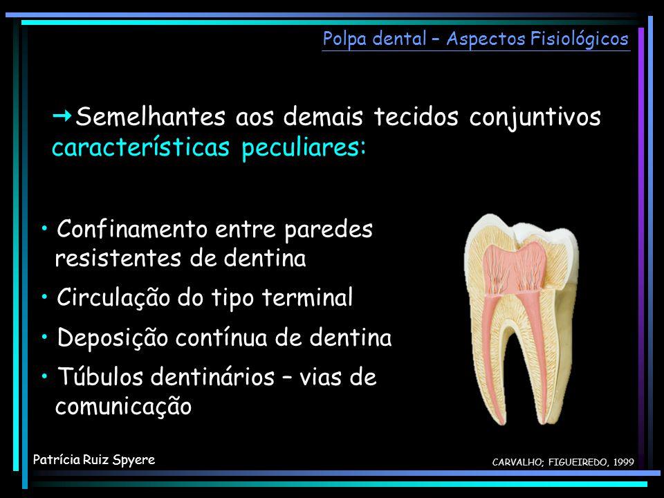 Semelhantes aos demais tecidos conjuntivos, características peculiares: Confinamento entre paredes resistentes de dentina Circulação do tipo terminal