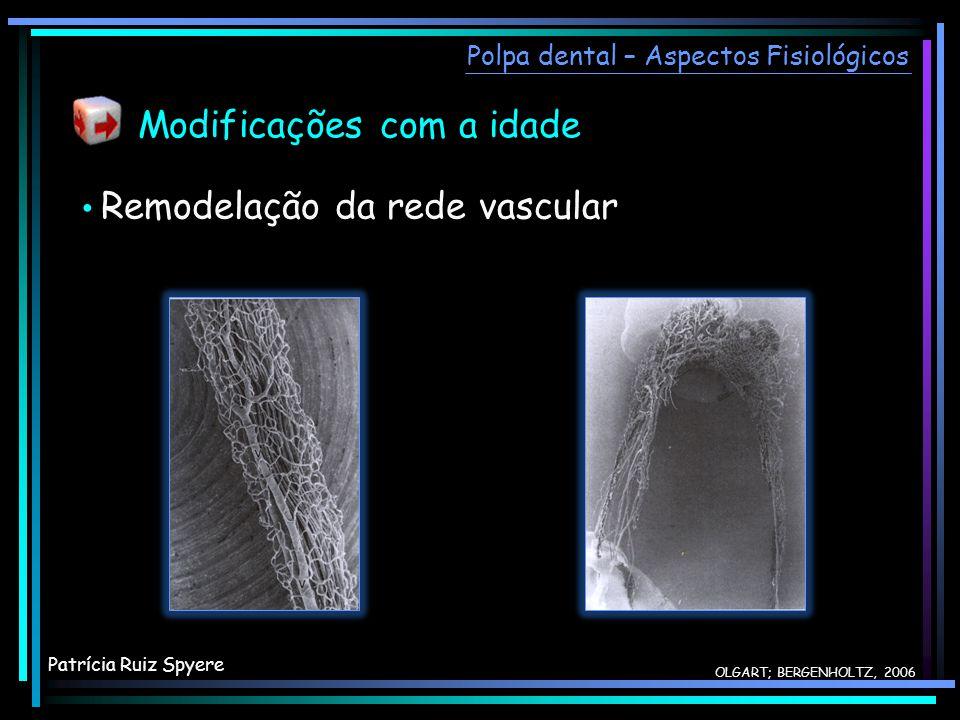 OLGART; BERGENHOLTZ, 2006 Remodelação da rede vascular Modificações com a idade Polpa dental – Aspectos Fisiológicos Patrícia Ruiz Spyere