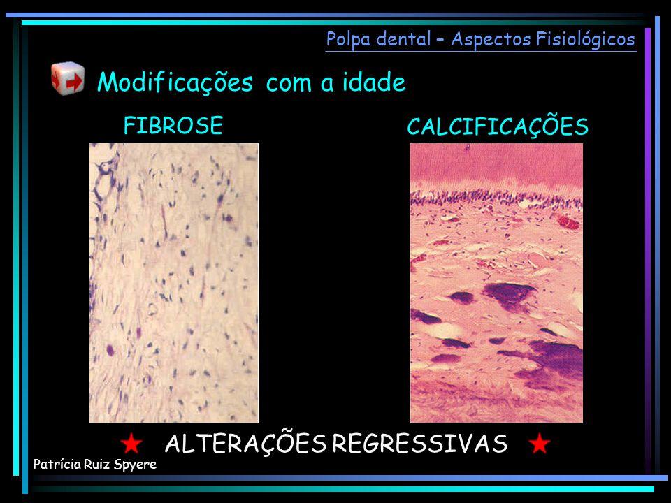 FIBROSE CALCIFICAÇÕES ALTERAÇÕES REGRESSIVAS Polpa dental – Aspectos Fisiológicos Modificações com a idade Patrícia Ruiz Spyere
