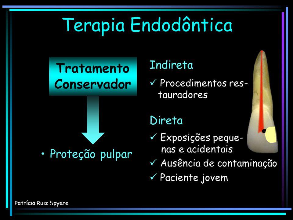SOUZA, 2001 ODONTOBLASTOS FIBROBLASTOS Polpa dental – Componentes celulares Patrícia Ruiz Spyere