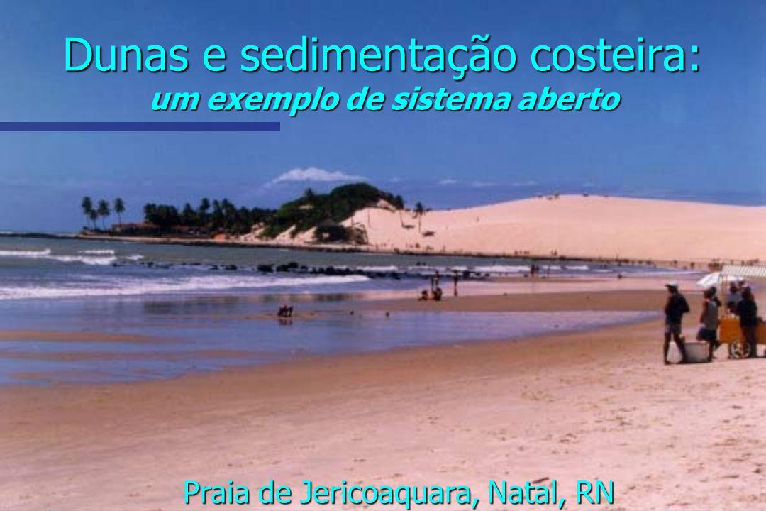 Dunas e sedimentação costeira: um exemplo de sistema aberto Praia de Jericoaquara, Natal, RN