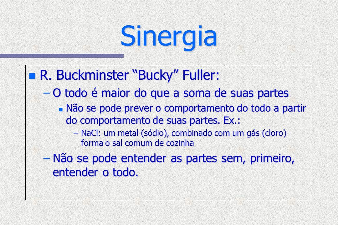 Sinergia n R. Buckminster Bucky Fuller: –O todo é maior do que a soma de suas partes n Não se pode prever o comportamento do todo a partir do comporta
