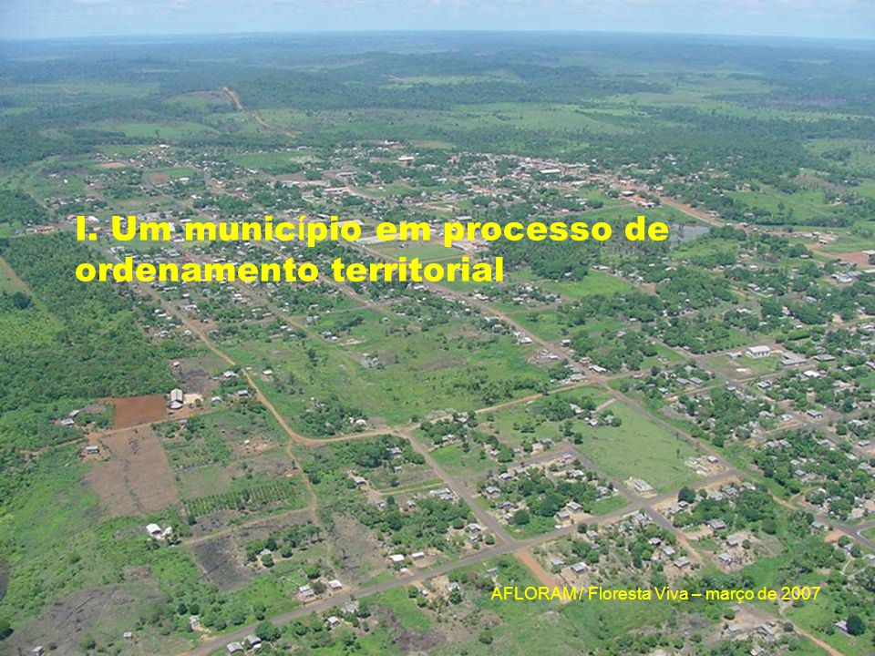 AFLORAM / Floresta Viva – março de 2007 V. O setor madeireiro no município : atores e cadeia