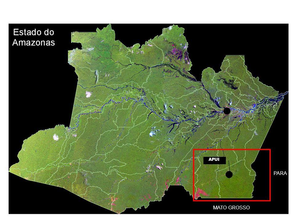Dados gerais 445 km Manaus linha recta Estrada : 400 km de Humaita, 290 km Jacareacanga, 300 km Novo Aripuana Porto : Prainha (120km), Juma (130km) Aeroporto : 2 voos por semana para Manaus 150 msnm 54 240 km2 20 000 hab PA do rio Juma : criado em 1982 Capacidade 7 500 familias, população : 1 500 familias 77 ramais, 1000 km de estradas comunidades ribeirinhas (IDAM) IDH 0,676 40% população evangelista