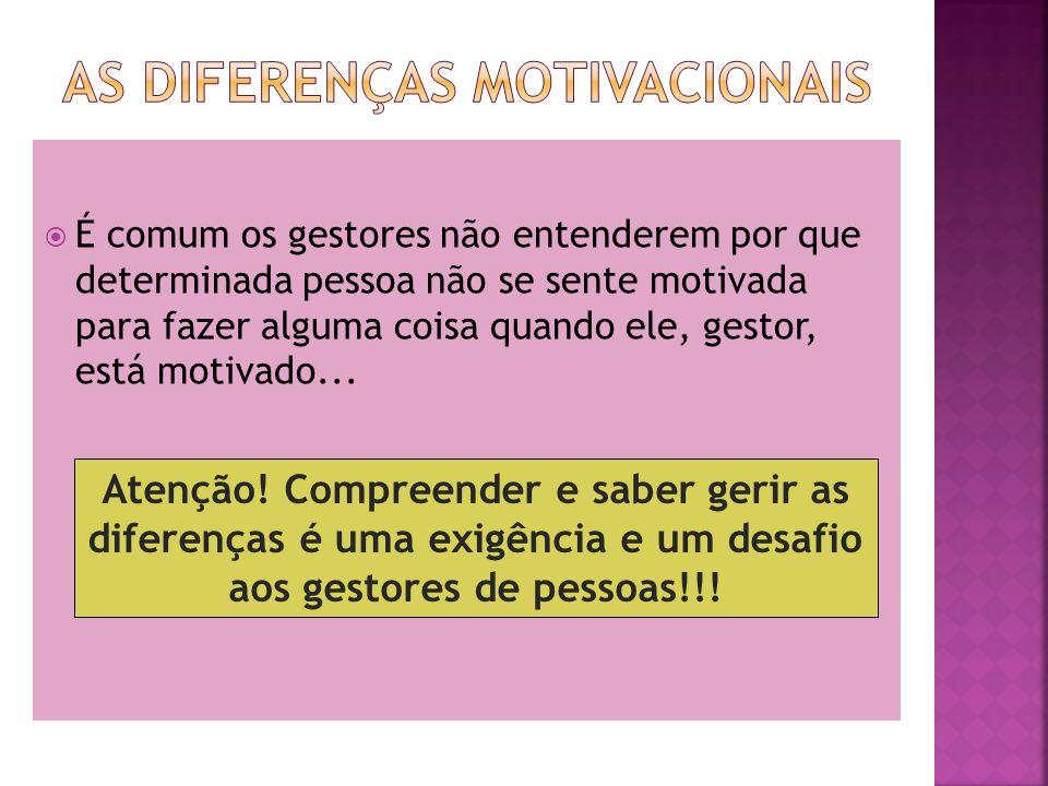 É comum os gestores não entenderem por que determinada pessoa não se sente motivada para fazer alguma coisa quando ele, gestor, está motivado...