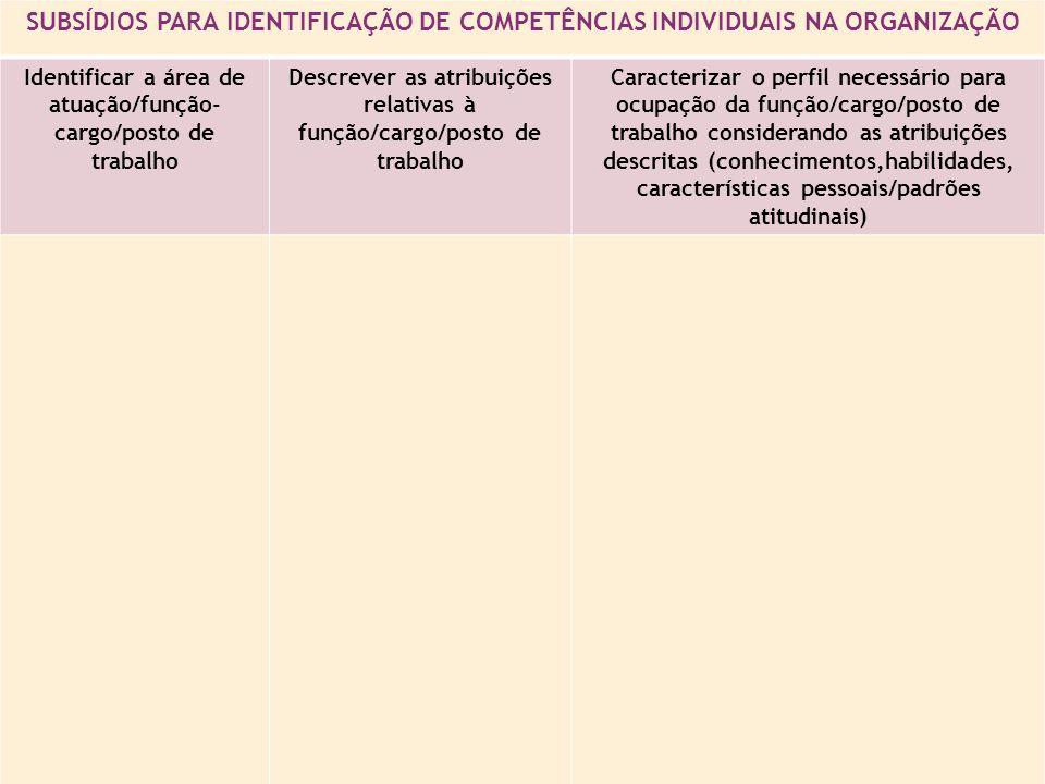 SUBSÍDIOS PARA IDENTIFICAÇÃO DE COMPETÊNCIAS INDIVIDUAIS NA ORGANIZAÇÃO Identificar a área de atuação/função- cargo/posto de trabalho Descrever as atribuições relativas à função/cargo/posto de trabalho Caracterizar o perfil necessário para ocupação da função/cargo/posto de trabalho considerando as atribuições descritas (conhecimentos,habilidades, características pessoais/padrões atitudinais)