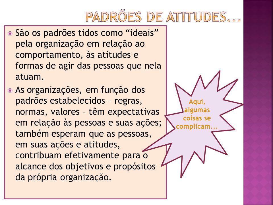 São os padrões tidos como ideais pela organização em relação ao comportamento, às atitudes e formas de agir das pessoas que nela atuam.