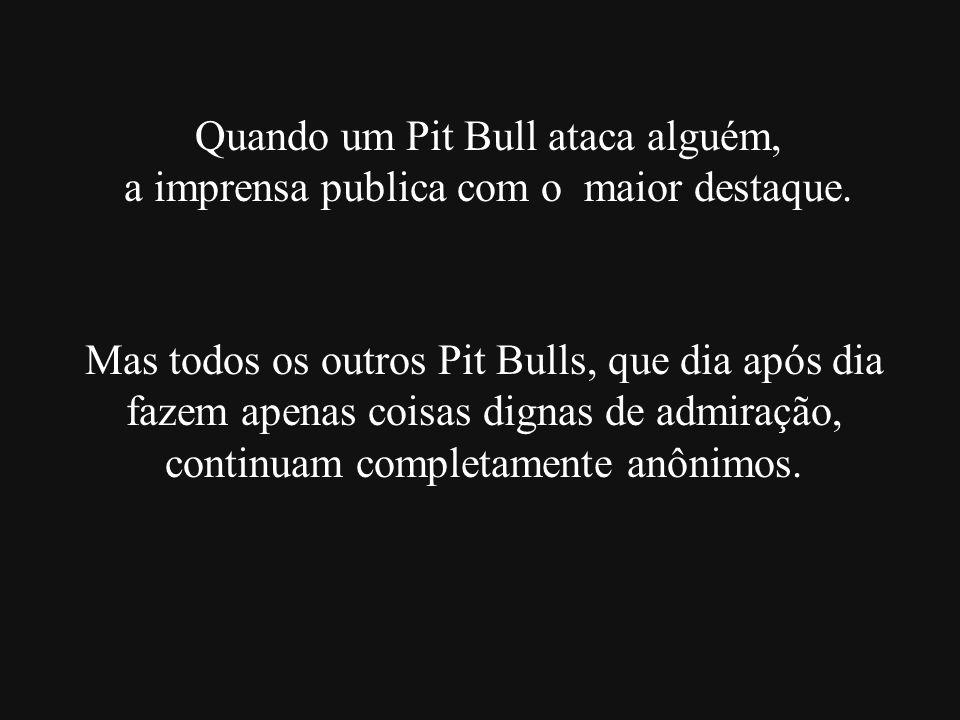 Quando um Pit Bull ataca alguém, a imprensa publica com o maior destaque. Mas todos os outros Pit Bulls, que dia após dia fazem apenas coisas dignas d