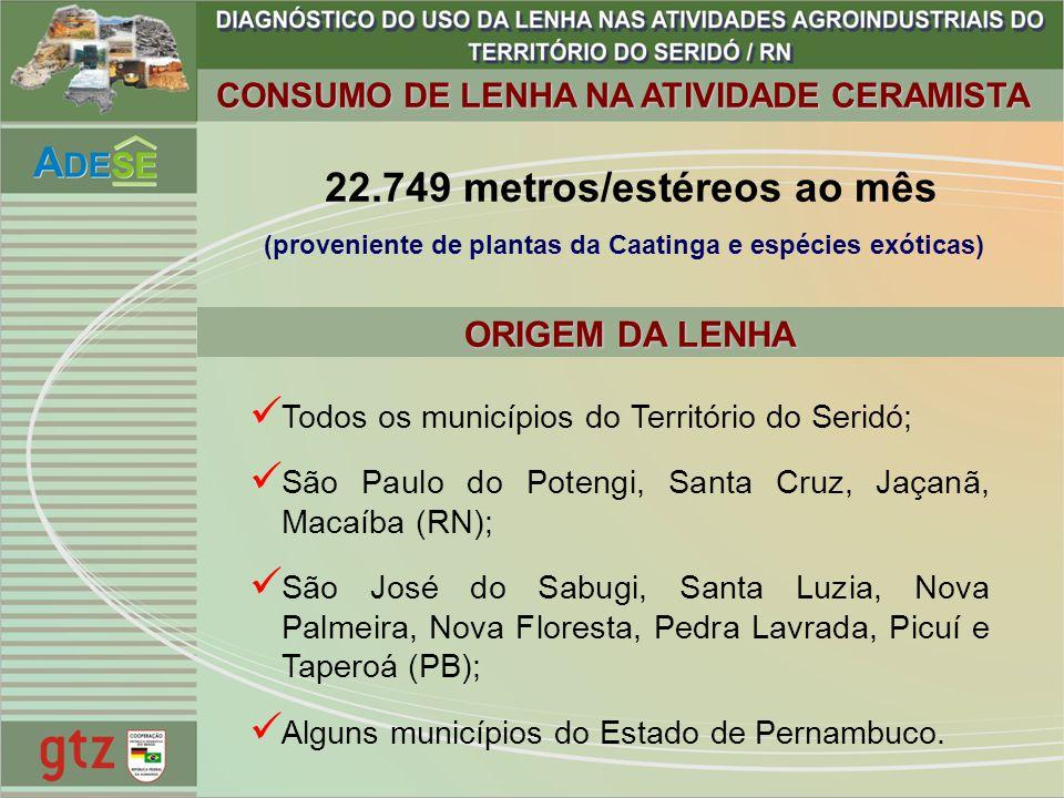 CONSUMO DE LENHA NA ATIVIDADE CERAMISTA Todos os municípios do Território do Seridó; São Paulo do Potengi, Santa Cruz, Jaçanã, Macaíba (RN); São José