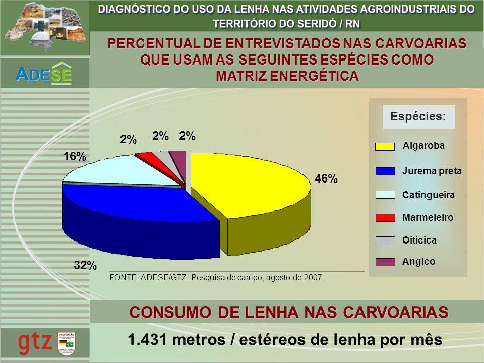 16% 46% 32% 2% PERCENTUAL DE ENTREVISTADOS NAS CARVOARIAS QUE USAM AS SEGUINTES ESPÉCIES COMO MATRIZ ENERGÉTICA Espécies: Algaroba Jurema preta Cating
