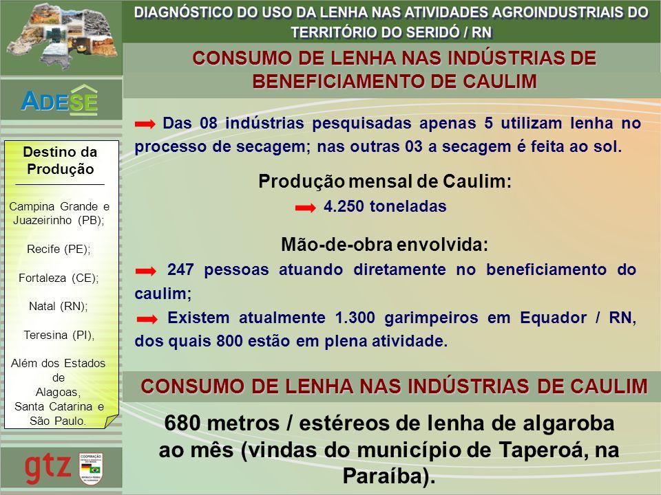 CONSUMO DE LENHA NAS INDÚSTRIAS DE BENEFICIAMENTO DE CAULIM Produção mensal de Caulim: 4.250 toneladas Mão-de-obra envolvida: 247 pessoas atuando dire