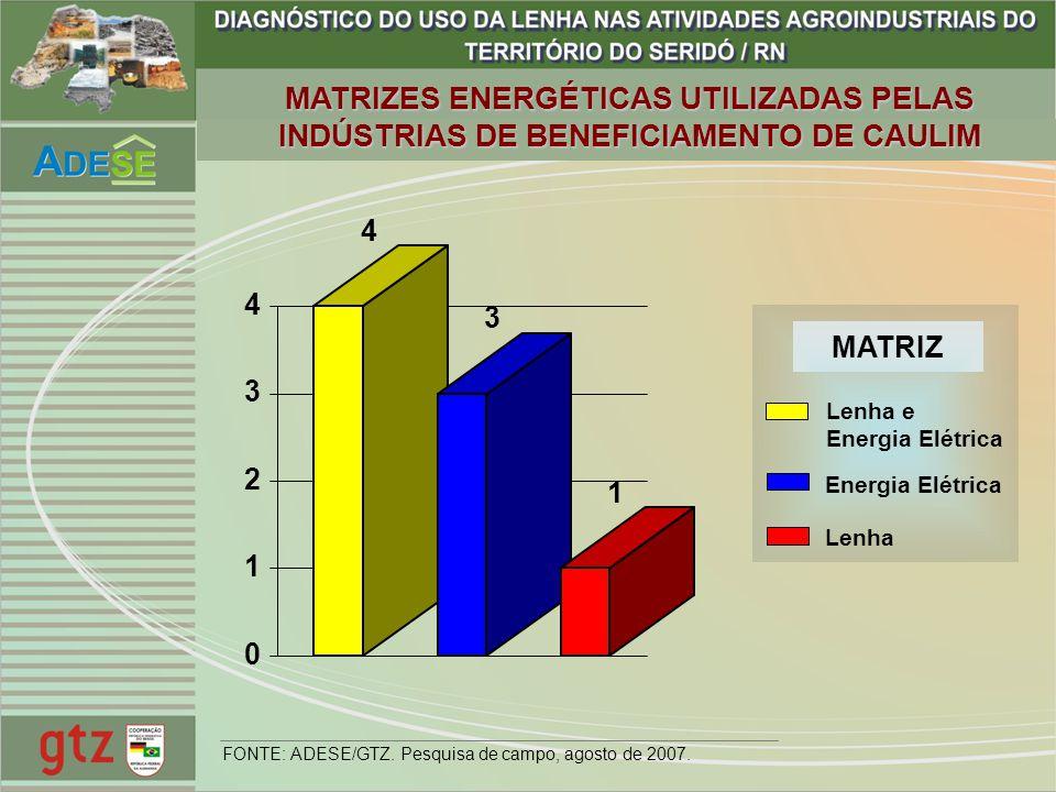 MATRIZES ENERGÉTICAS UTILIZADAS PELAS INDÚSTRIAS DE BENEFICIAMENTO DE CAULIM 4 3 1 0 1 2 3 4 Lenha e Energia Elétrica Lenha MATRIZ FONTE: ADESE/GTZ. P