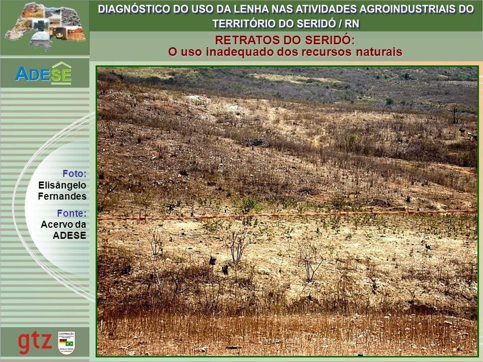 RETRATOS DO SERIDÓ: O uso inadequado dos recursos naturais Foto: Elisângelo Fernandes Fonte: Acervo da ADESE