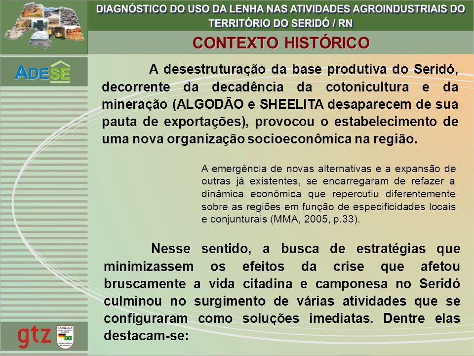 A desestruturação da base produtiva do Seridó, decorrente da decadência da cotonicultura e da mineração (ALGODÃO e SHEELITA desaparecem de sua pauta d
