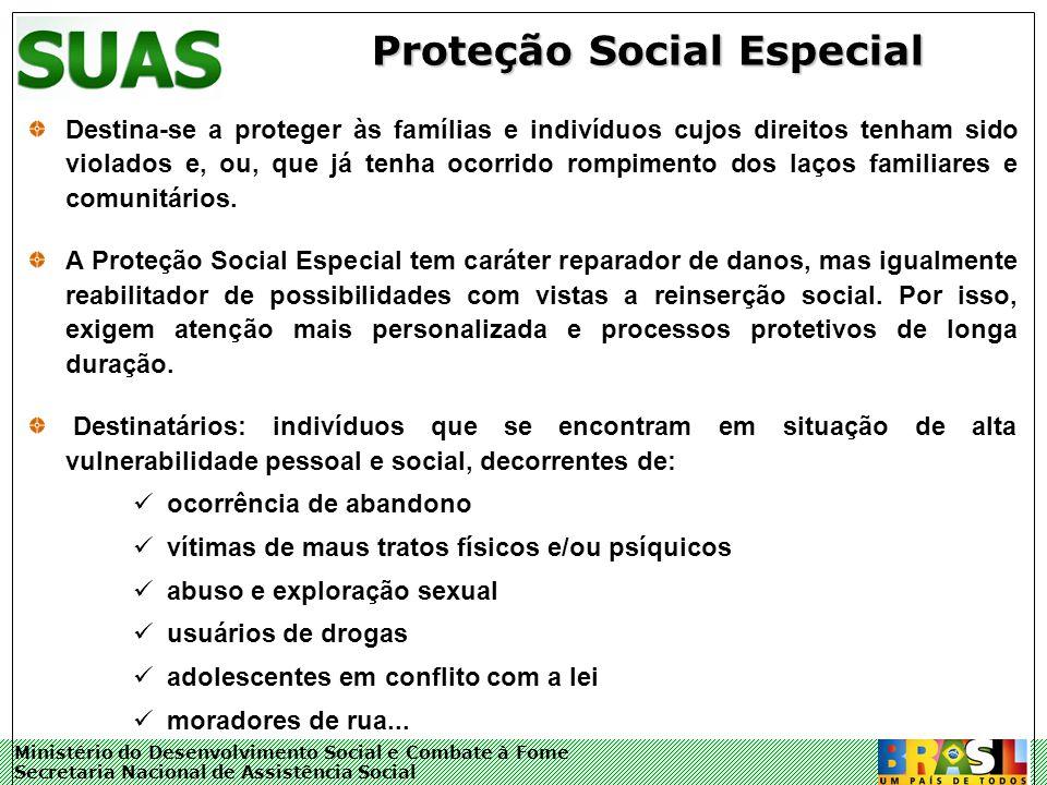 Ministério do Desenvolvimento Social e Combate à Fome Secretaria Nacional de Assistência Social Proteção Social Especial Destina-se a proteger às famí