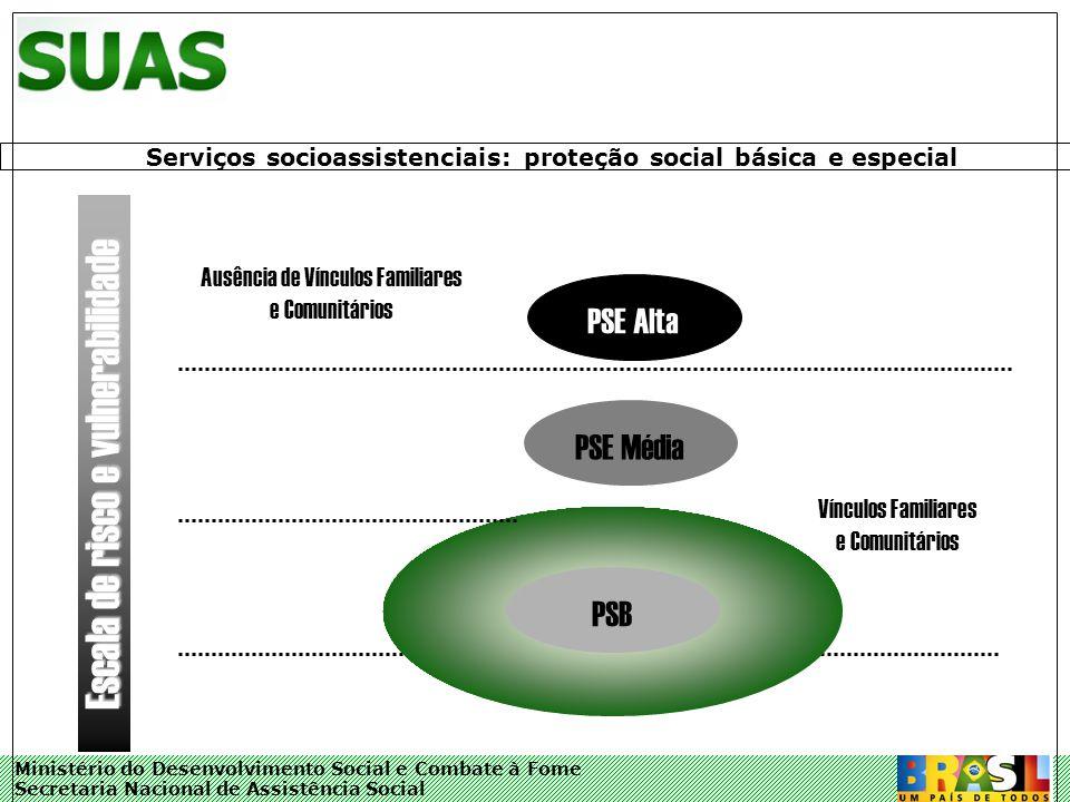 Ministério do Desenvolvimento Social e Combate à Fome Secretaria Nacional de Assistência Social PSB PSE Média PSE Alta Ausência de Vínculos Familiares