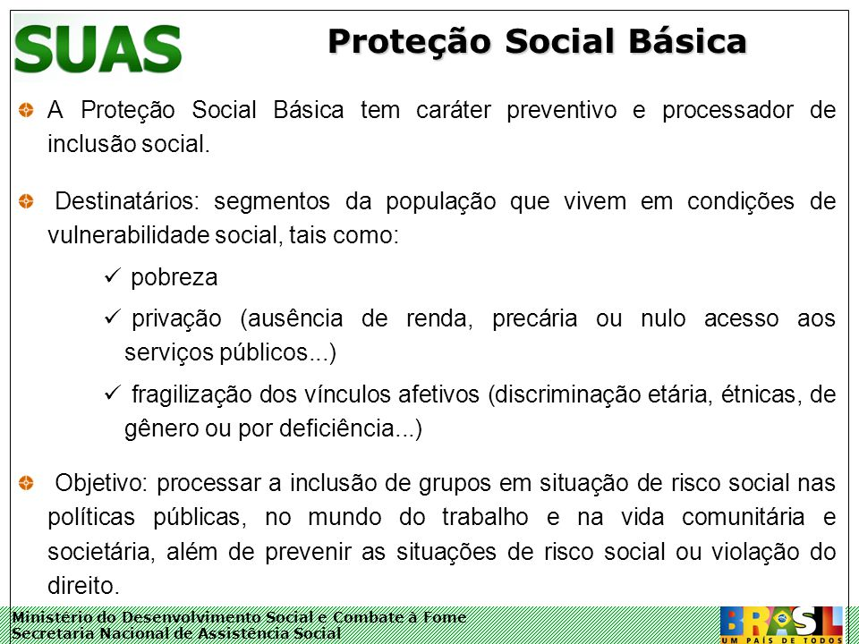 Ministério do Desenvolvimento Social e Combate à Fome Secretaria Nacional de Assistência Social Proteção Social Básica A Proteção Social Básica tem ca