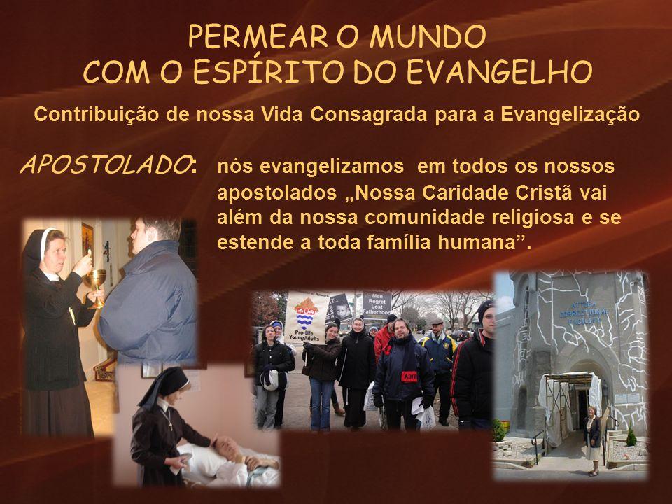 PERMEAR O MUNDO COM O ESPÍRITO DO EVANGELHO Contribuição de nossa Vida Consagrada para a Evangelização APOSTOLADO : nós evangelizamos em todos os noss