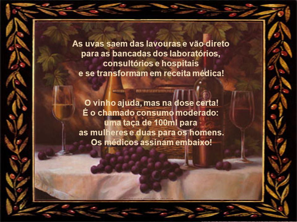 Um grupo de amigos celebra o encontro. Taças de vinho são erguidas num gesto festivo e vozes animadas repetem juntas o velho brinde: Saúde ! FONTE: GL