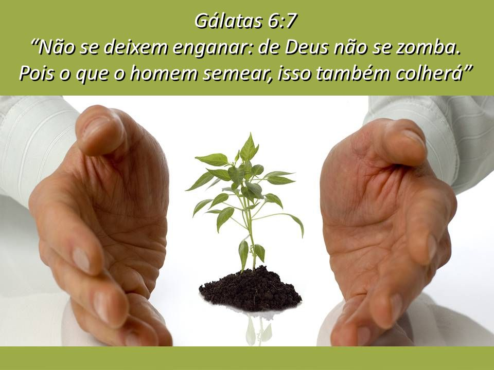 Gálatas 6:7 Não se deixem enganar: de Deus não se zomba. Pois o que o homem semear, isso também colherá Gálatas 6:7 Não se deixem enganar: de Deus não