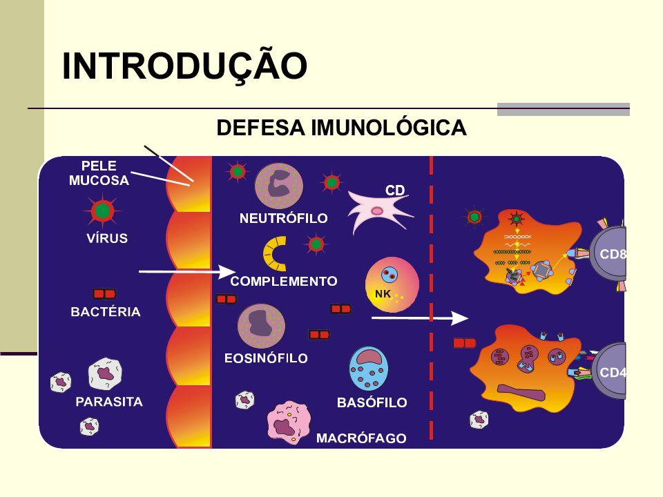 INTRODUÇÃO DEFESA IMUNOLÓGICA PAREDE DE VASO CD