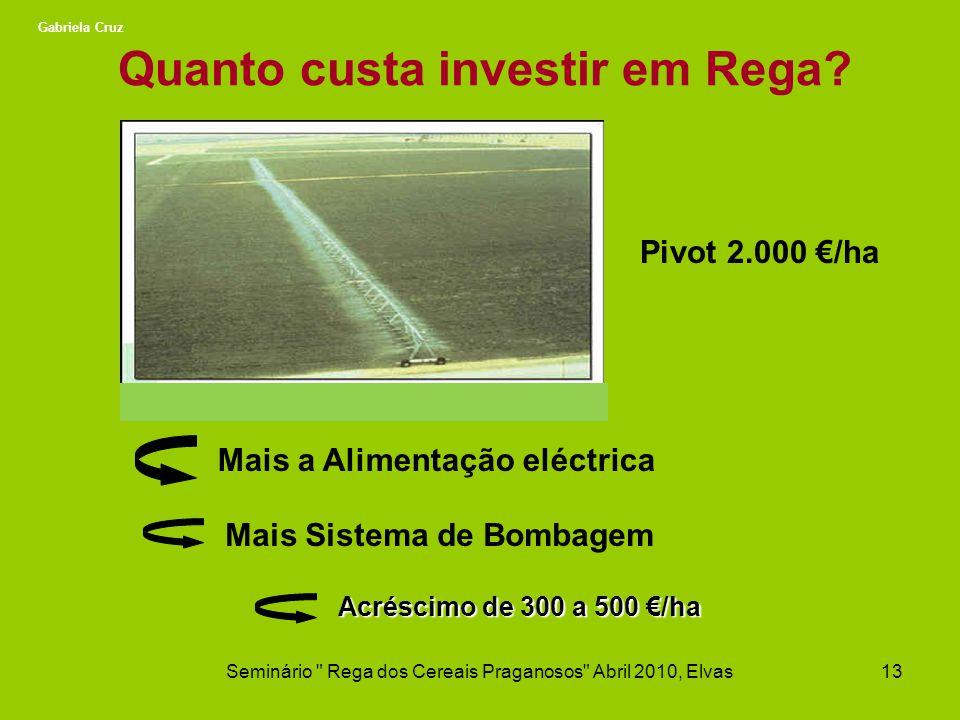 Quanto custa investir em Rega? Pivot 2.000 /ha Mais a Alimentação eléctrica Mais Sistema de Bombagem Acréscimo de 300 a 500 /ha Seminário