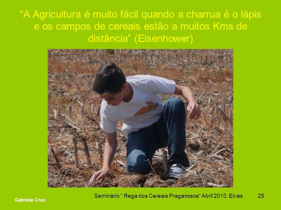A Agricultura é muito fácil quando a charrua é o lápis e os campos de cereais estão a muitos Kms de distância (Eisenhower) Seminário