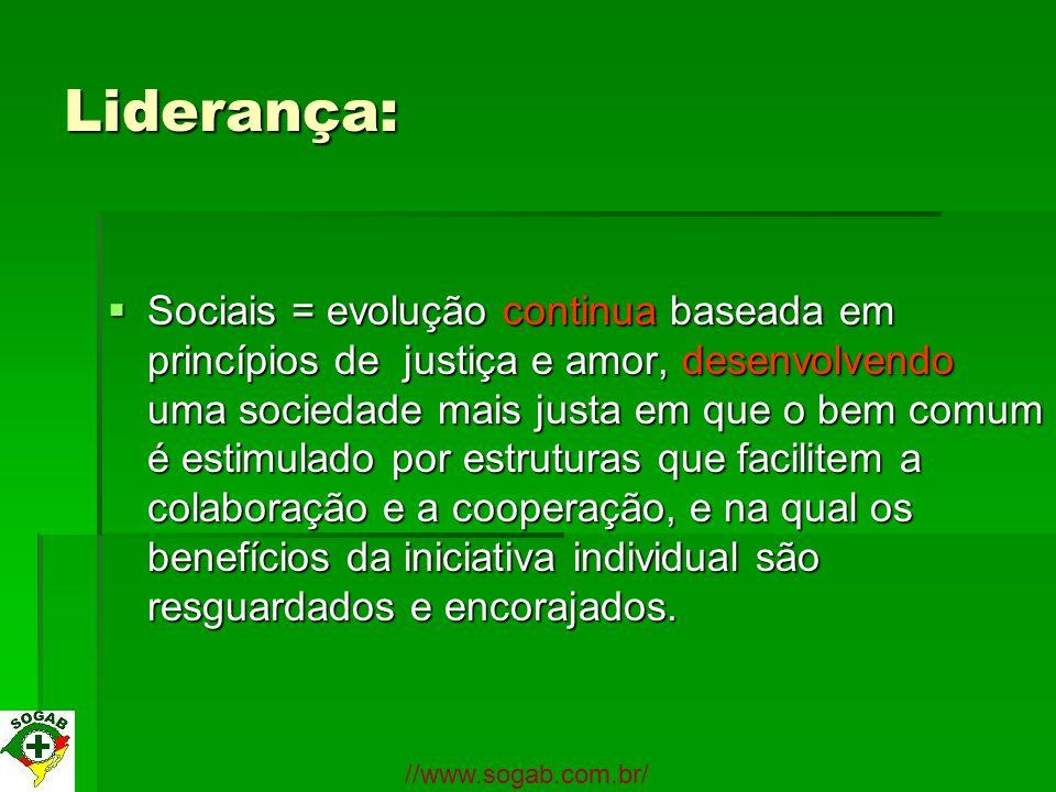 Liderança: Sociais = evolução continua baseada em princípios de justiça e amor, desenvolvendo uma sociedade mais justa em que o bem comum é estimulado