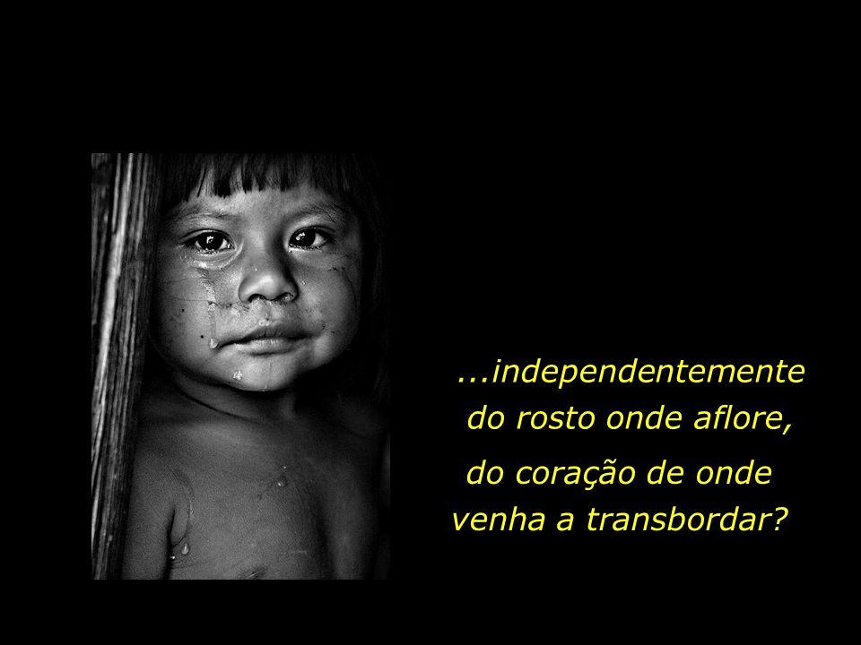holdemqueen@hotmail.com que uma lágrima é uma lágrima..., Ensinaremos aos nossos filhos