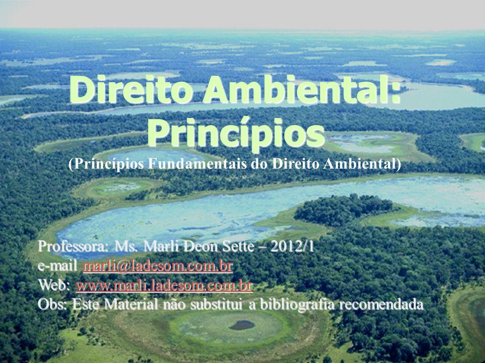 Marli T.Deon Sette - 201213 Princípios k) Princípio da Participação: (relaciona-se ao art.