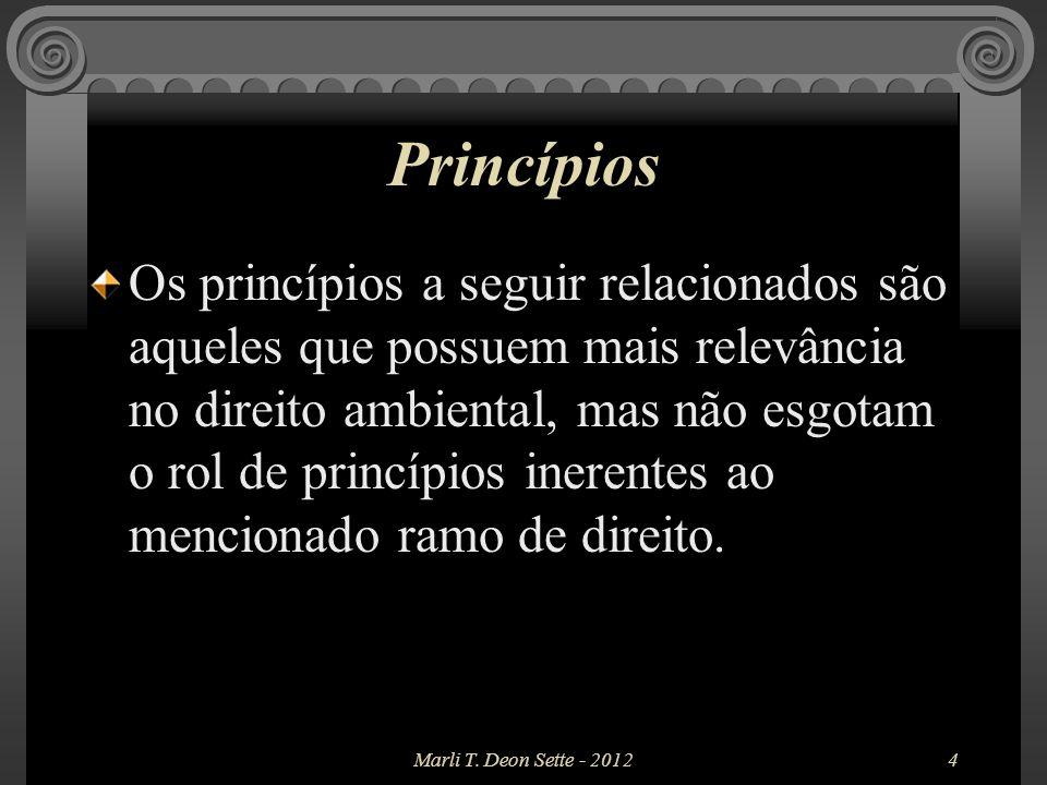 5 Princípios a) Princípio do direito humano fundamental (P.