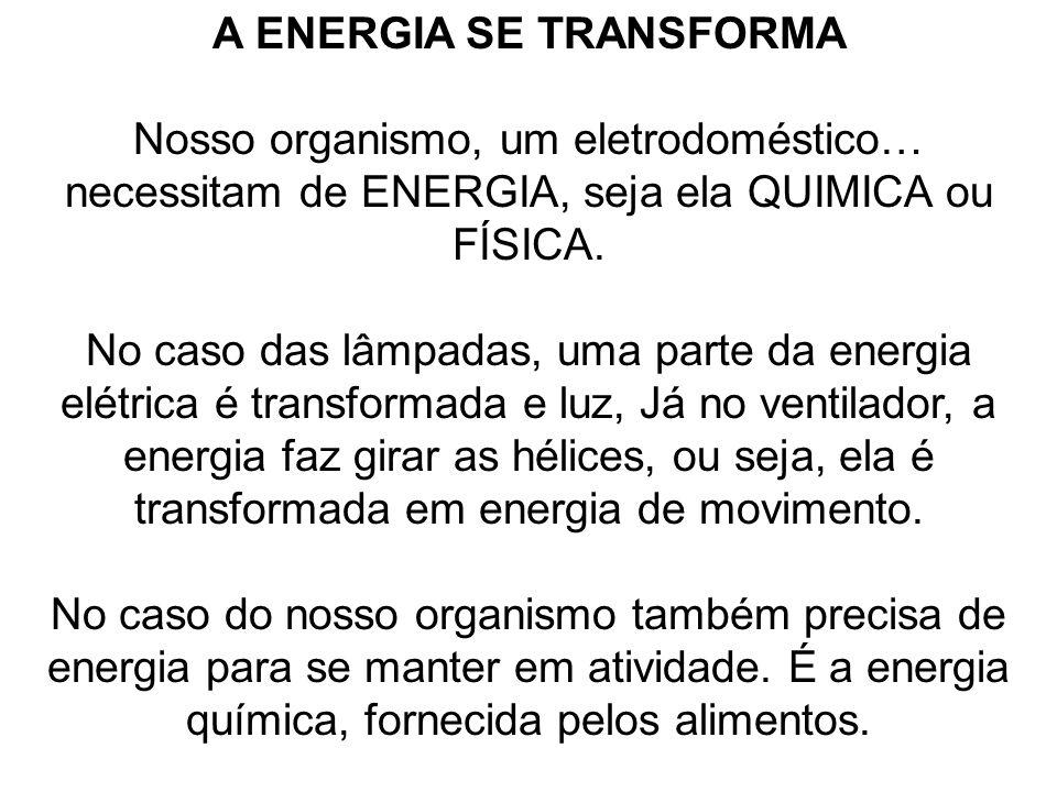A ENERGIA SE TRANSFORMA Nosso organismo, um eletrodoméstico… necessitam de ENERGIA, seja ela QUIMICA ou FÍSICA. No caso das lâmpadas, uma parte da ene