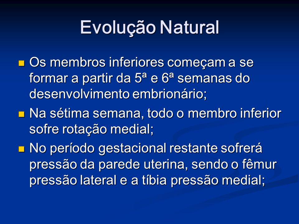 Evolução Natural Os membros inferiores começam a se formar a partir da 5ª e 6ª semanas do desenvolvimento embrionário; Os membros inferiores começam a