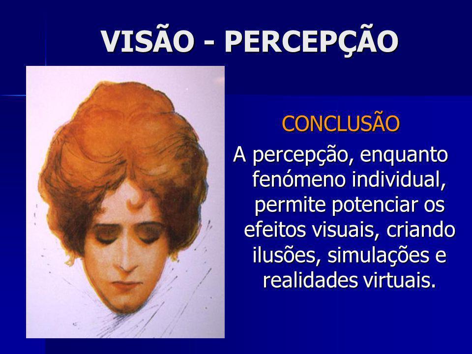 CONCLUSÃO A percepção, enquanto fenómeno individual, permite potenciar os efeitos visuais, criando ilusões, simulações e realidades virtuais.