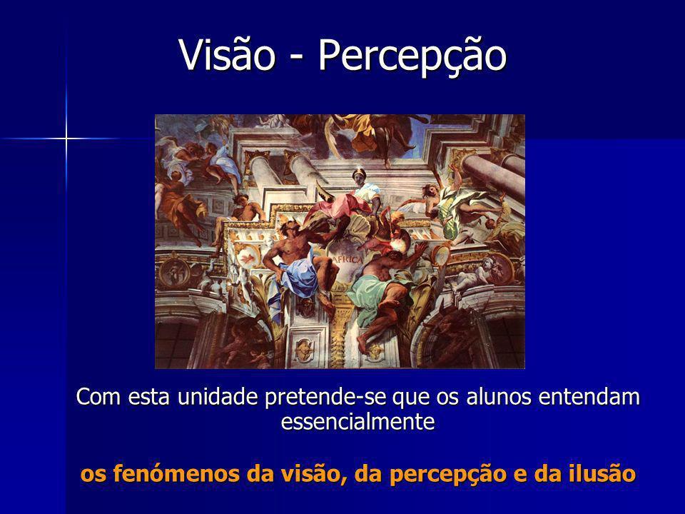 Visão - Percepção Com esta unidade pretende-se que os alunos entendam essencialmente os fenómenos da visão, da percepção e da ilusão