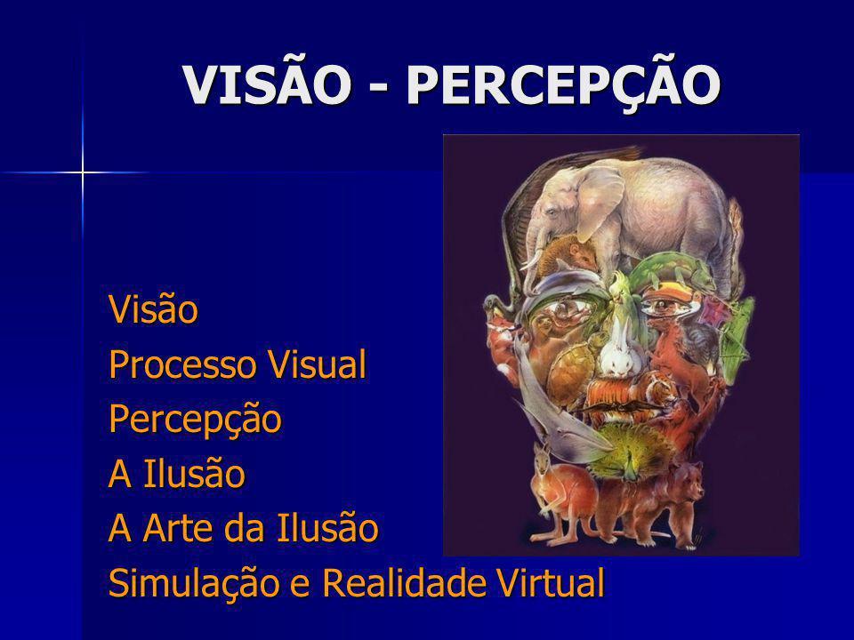 VISÃO - PERCEPÇÃO Visão Processo Visual Percepção A Ilusão A Arte da Ilusão Simulação e Realidade Virtual