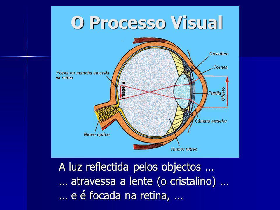A luz reflectida pelos objectos … … atravessa a lente (o cristalino) … … e é focada na retina, … O Processo Visual