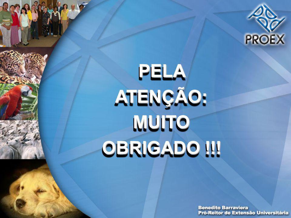 PELA ATENÇÃO: MUITO OBRIGADO !!!