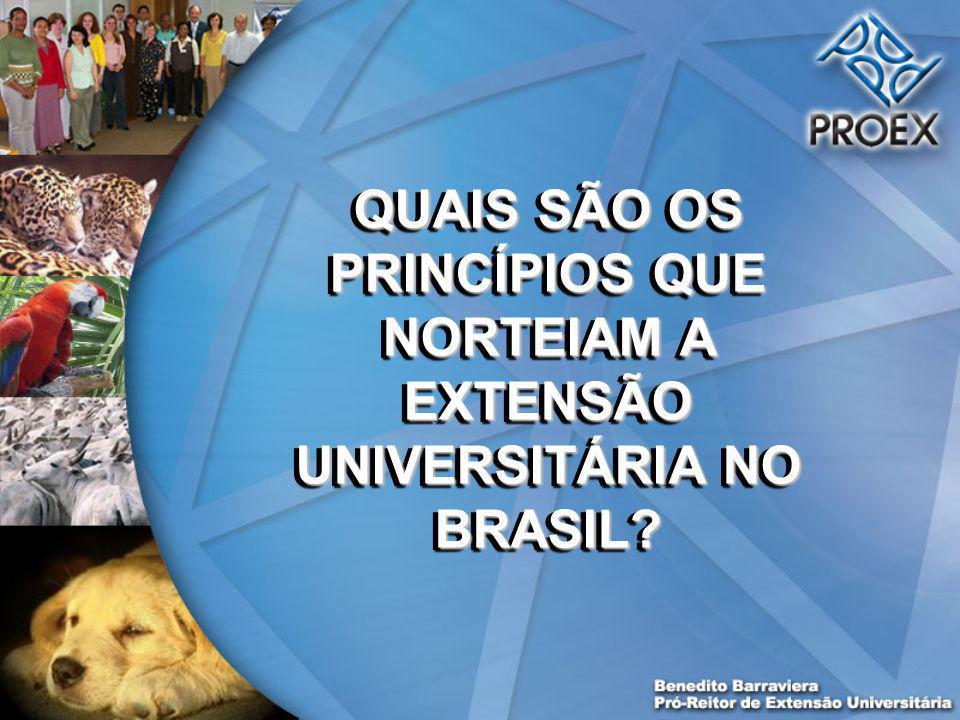 QUAIS SÃO OS PRINCÍPIOS QUE NORTEIAM A EXTENSÃO UNIVERSITÁRIA NO BRASIL
