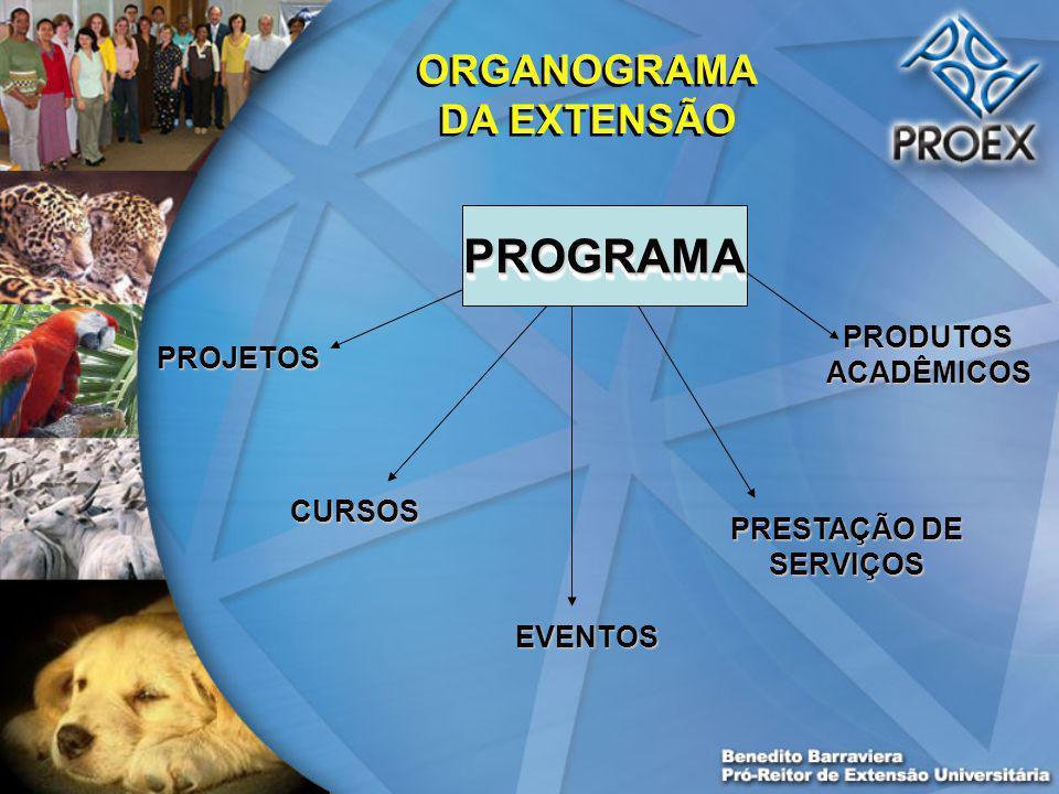 PROGRAMAPROGRAMA PROJETOS CURSOS EVENTOS PRESTAÇÃO DE SERVIÇOS PRODUTOS ACADÊMICOS ORGANOGRAMA DA EXTENSÃO
