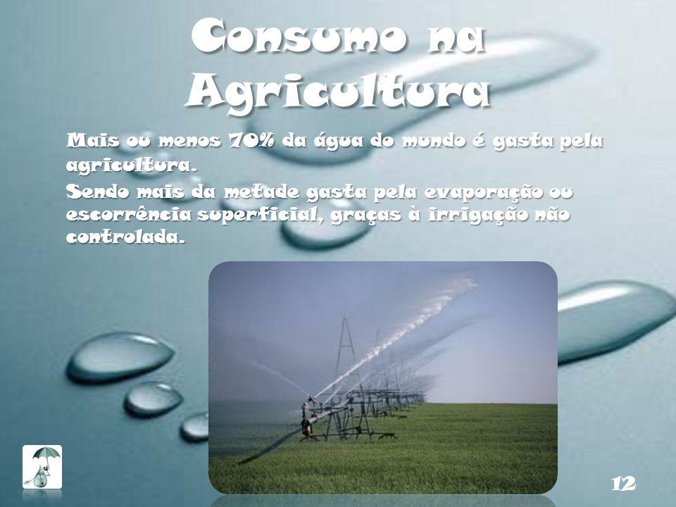 Consumo na Agricultura Mais ou menos 70% da água do mundo é gasta pela agricultura. Sendo mais da metade gasta pela evaporação ou escorrência superfic