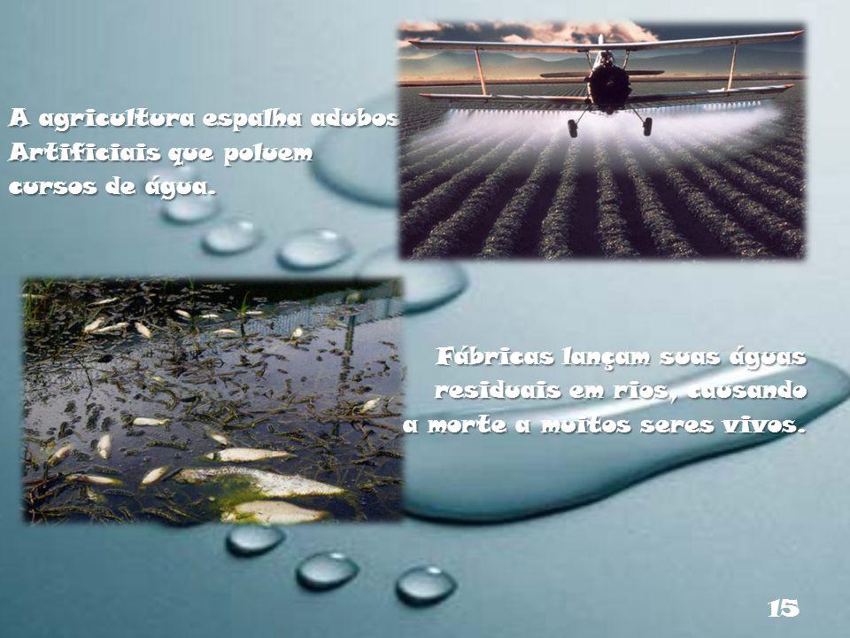 A agricultura espalha adubos Artificiais que poluem cursos de água. Fábricas lançam suas águas residuais em rios, causando a morte a muitos seres vivo