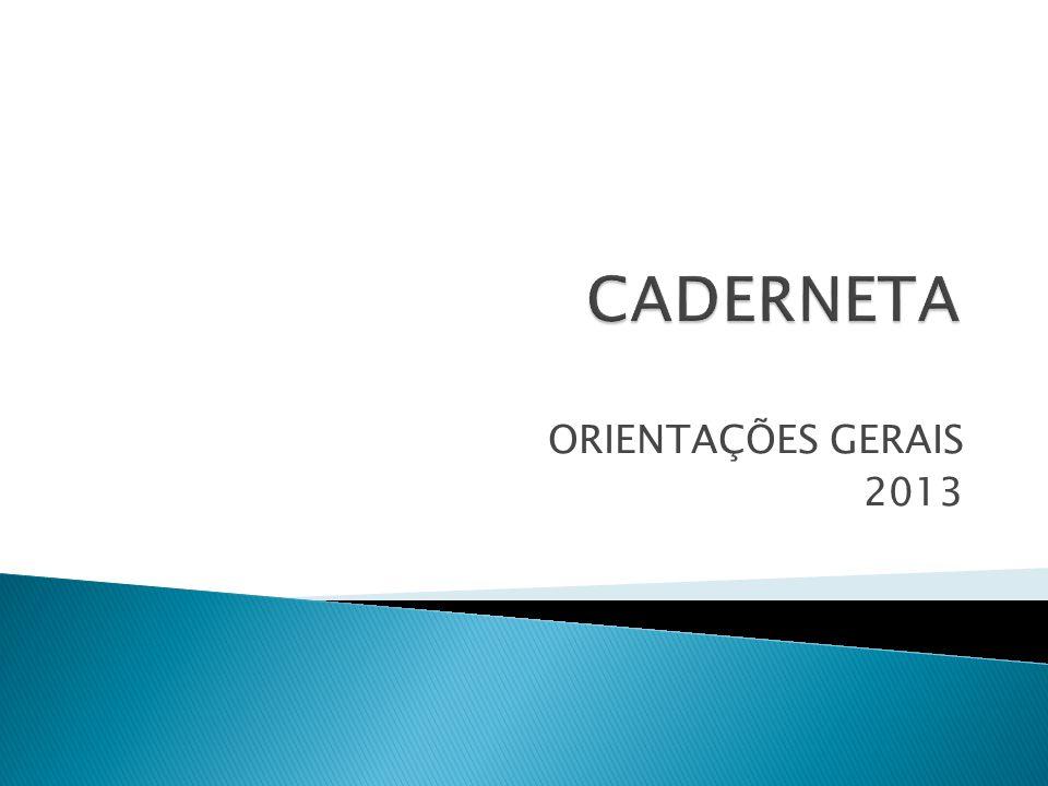 ORIENTAÇÕES GERAIS 2013