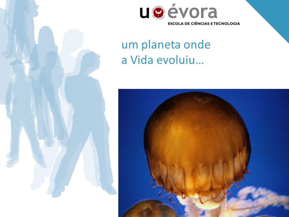um planeta onde a Vida evoluiu…